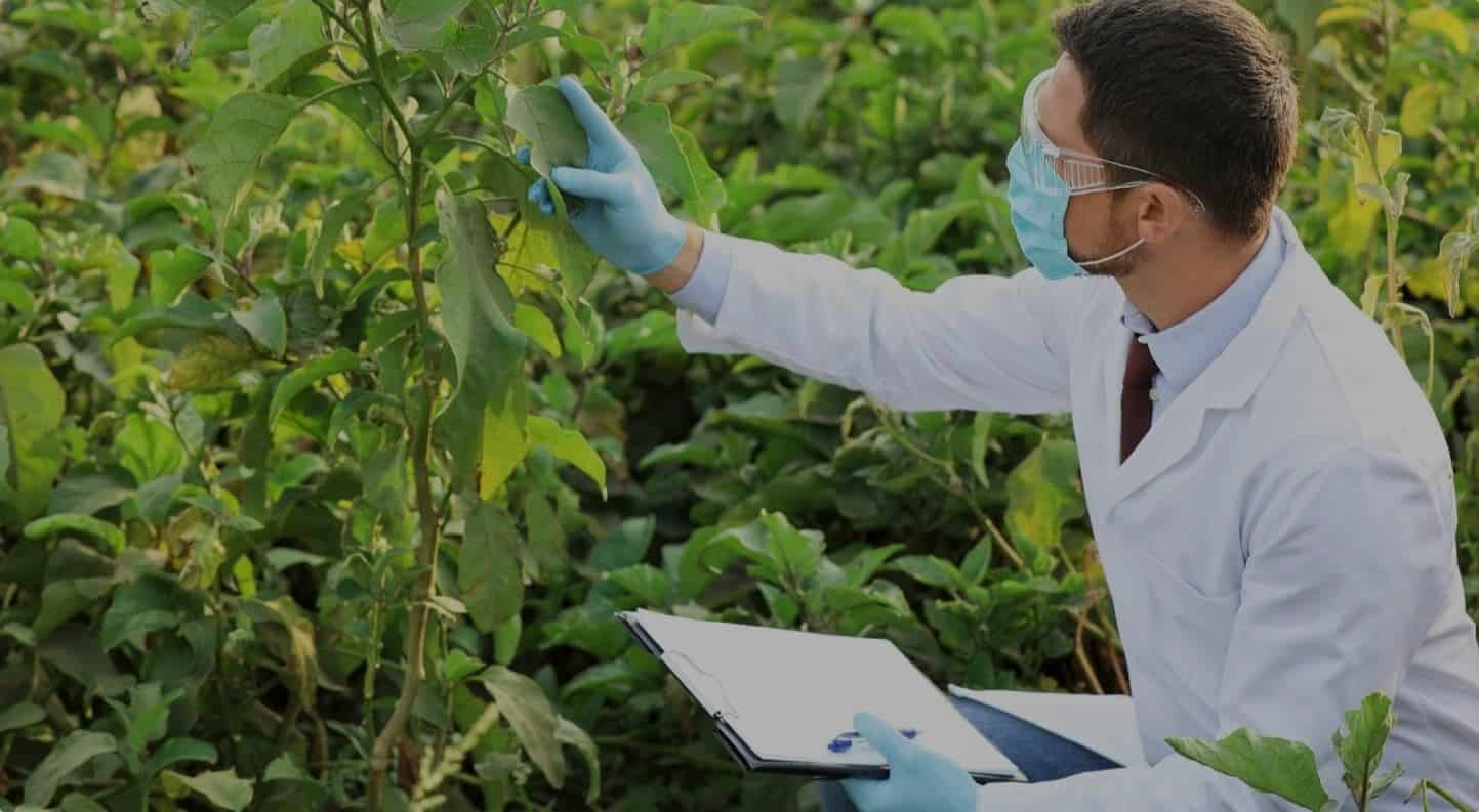 Improving biocide performance by a synergist